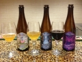 The Wicked Weed Brewery Beers
